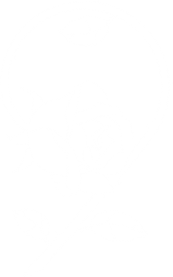 9_Roses_Logo_outlines white